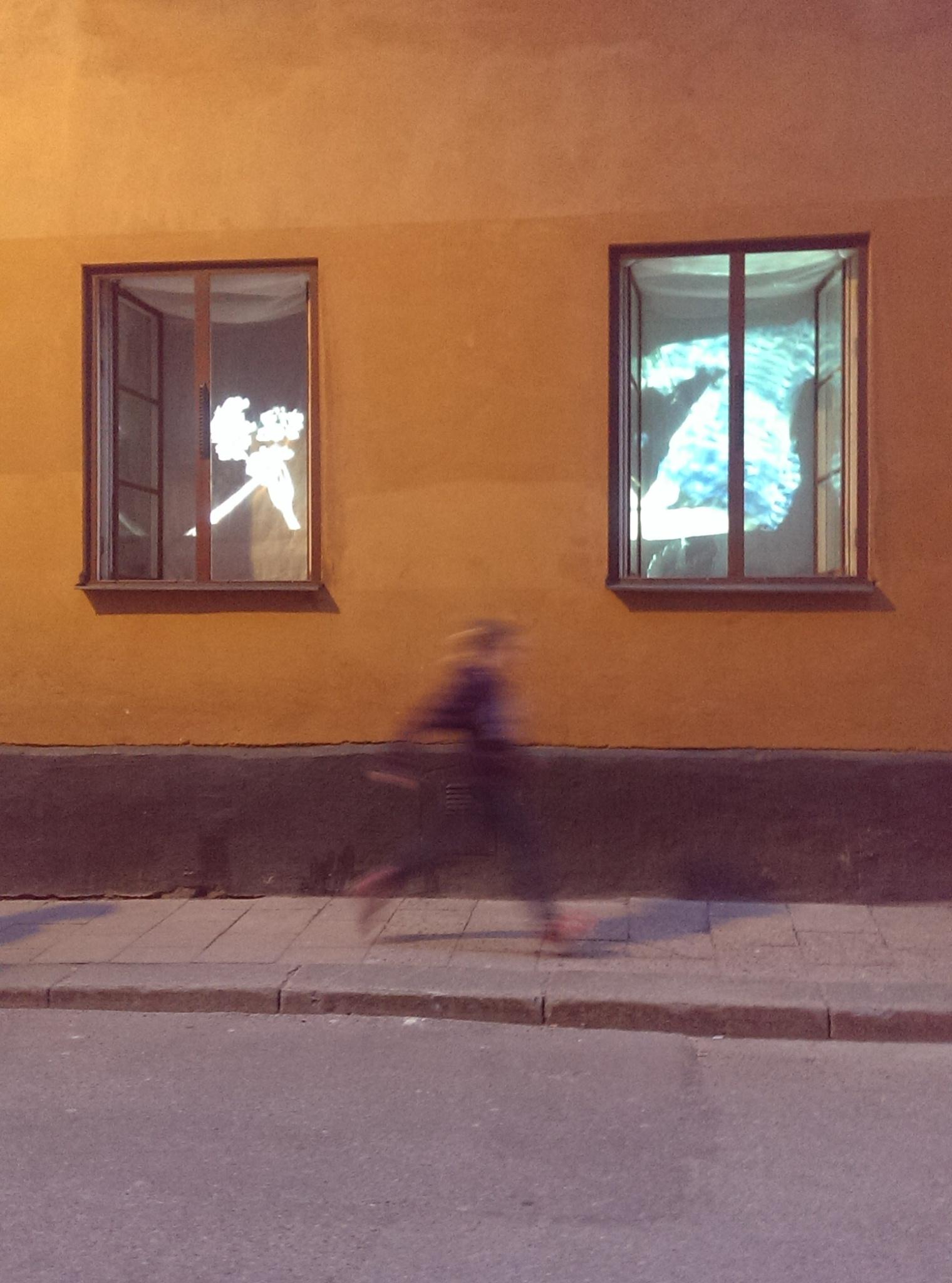 Foto: Madelene Gunnarsson